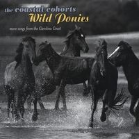Wild Ponies by The Coastal Cohorts